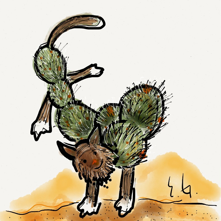 the Cactus Cat Entry # 11