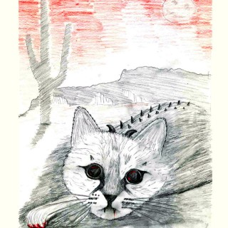 the Cactus Cat Entry # 13