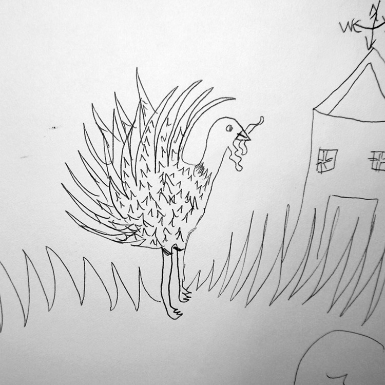 the Turkey Entry # 24