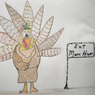 the Turkey Entry # 6