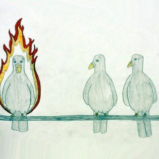 The Phoenix Entry # 10