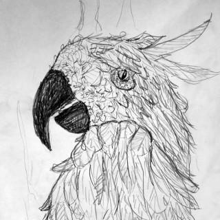 The Phoenix Entry # 8