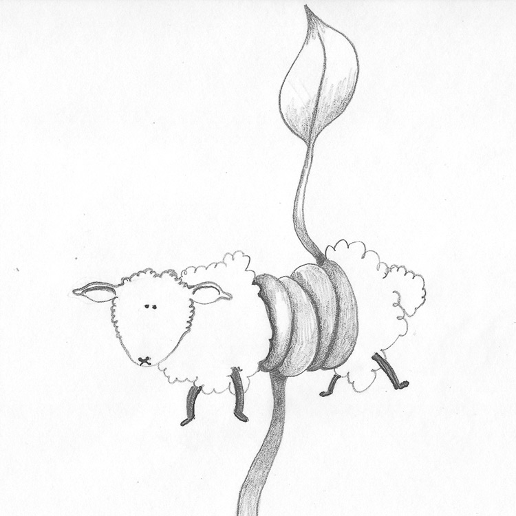 The Vegetable Lamb Entry # 19