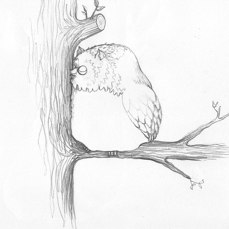 The Hootpecker Entry # 8