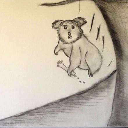 the Drop Bear Entry # 6