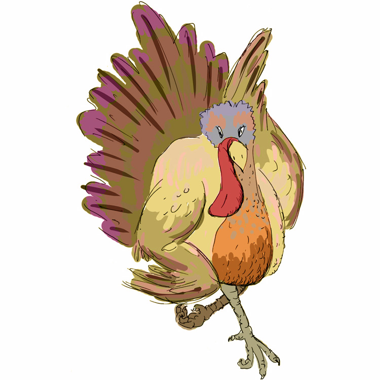 2013 Turkey – Submission # 8