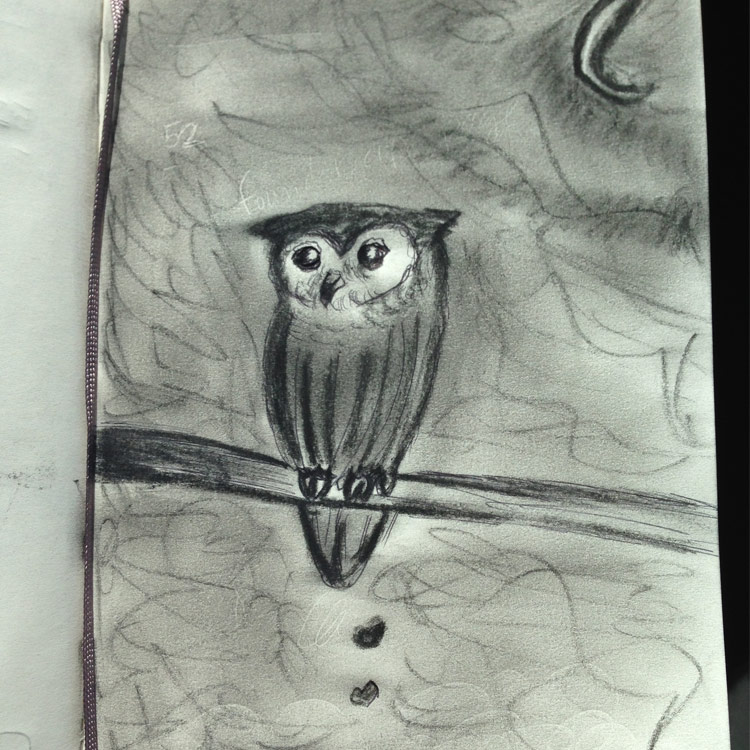 The Lil Owl Entry # 15