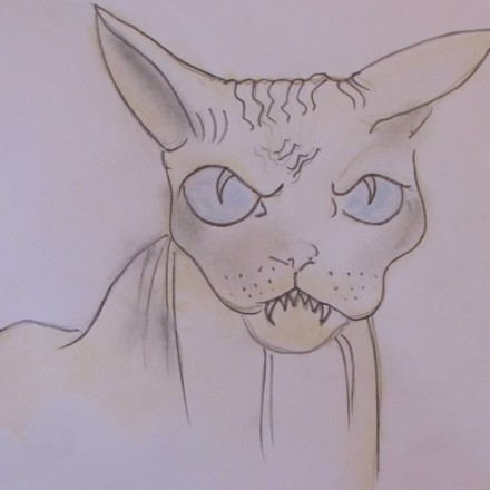 The Splinter Cat Entry # 7