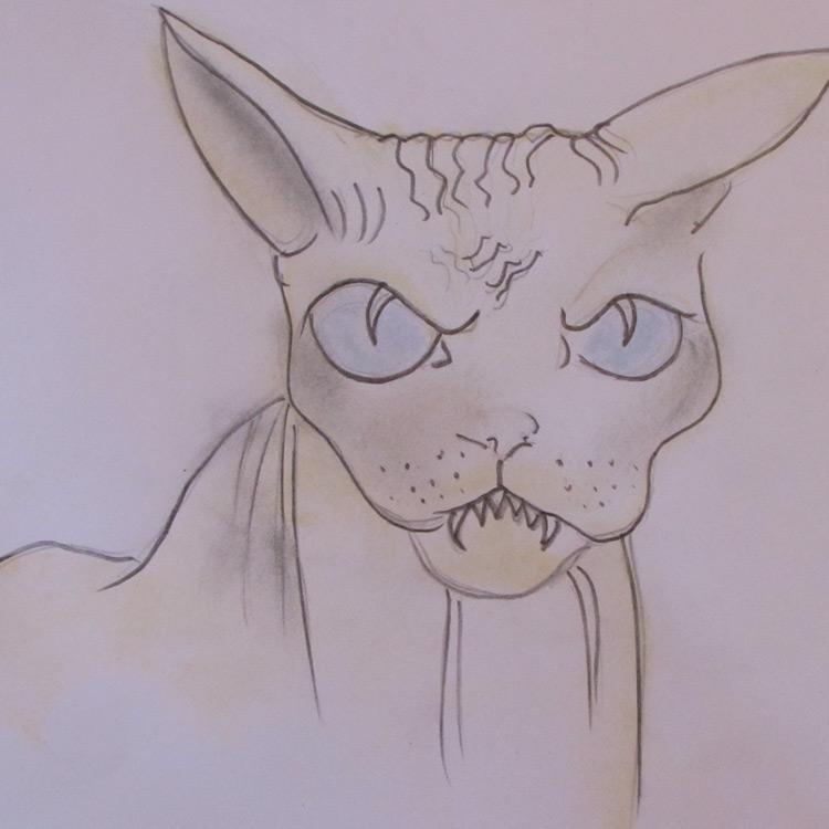 The Splinter Cat Entry # 7