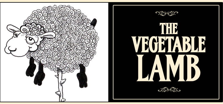 The Vegetable Lamb