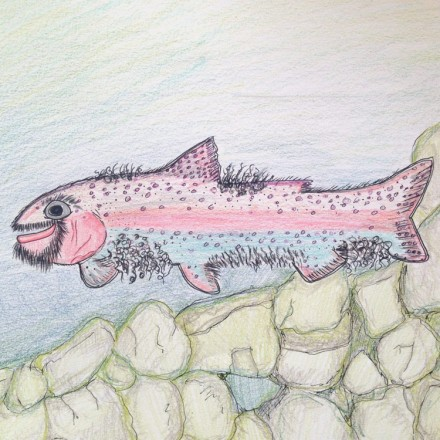 The Fur Bearing Trout Entry # 1
