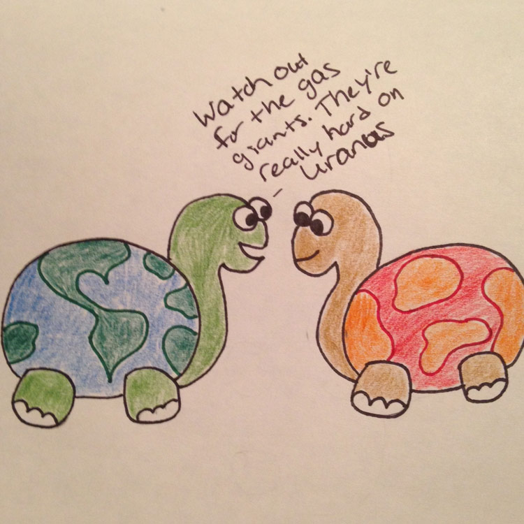 The World Turtle Entry # 1