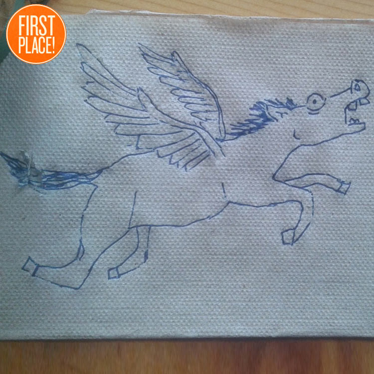 The First Place Pegasus Entry