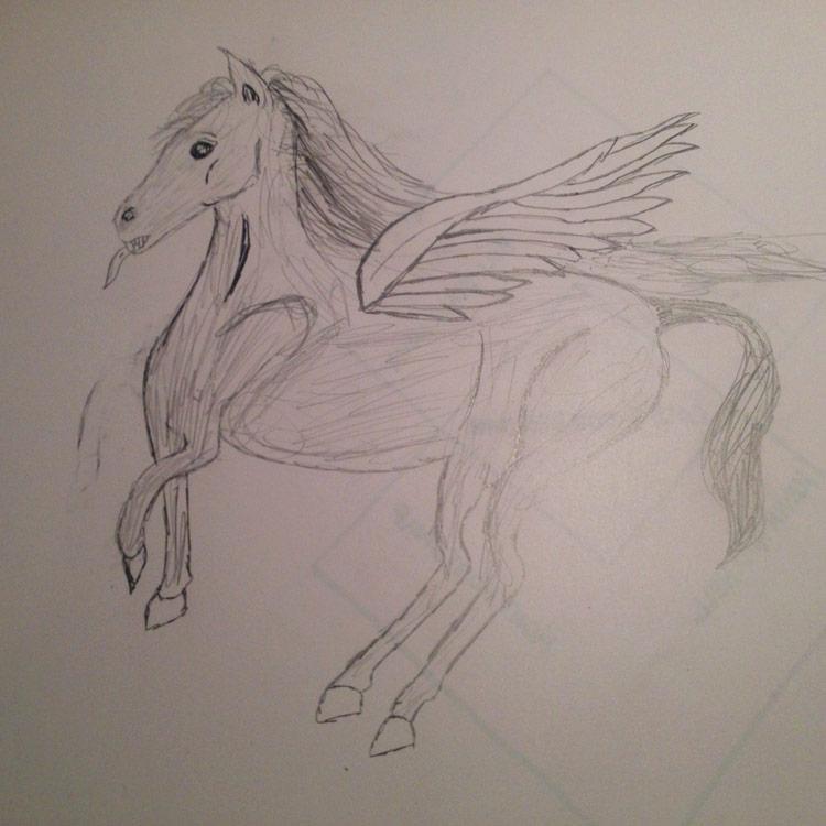 The Pegasus Entry # 4