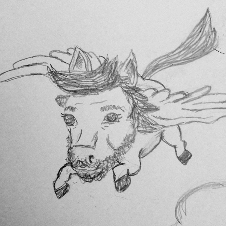 The Pegasus Entry # 6