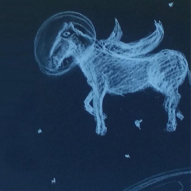 The Pegasus Entry # 7
