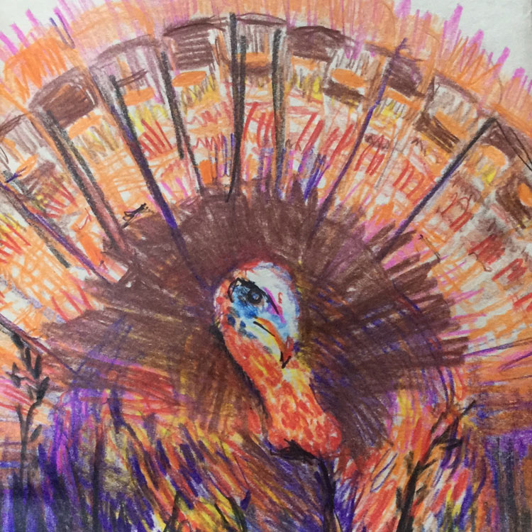 The Turkey (2016) Entry # 1