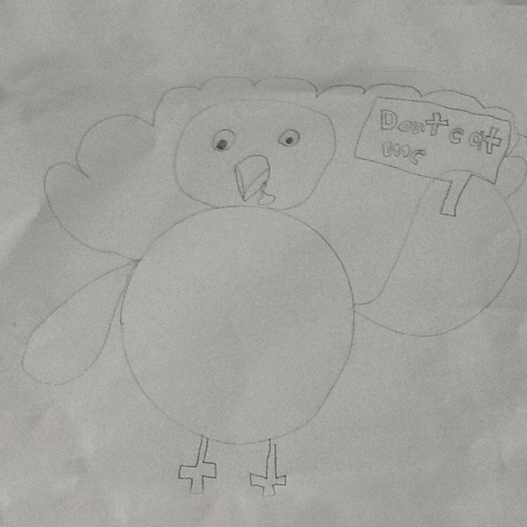 The Turkey (2016) Entry # 10