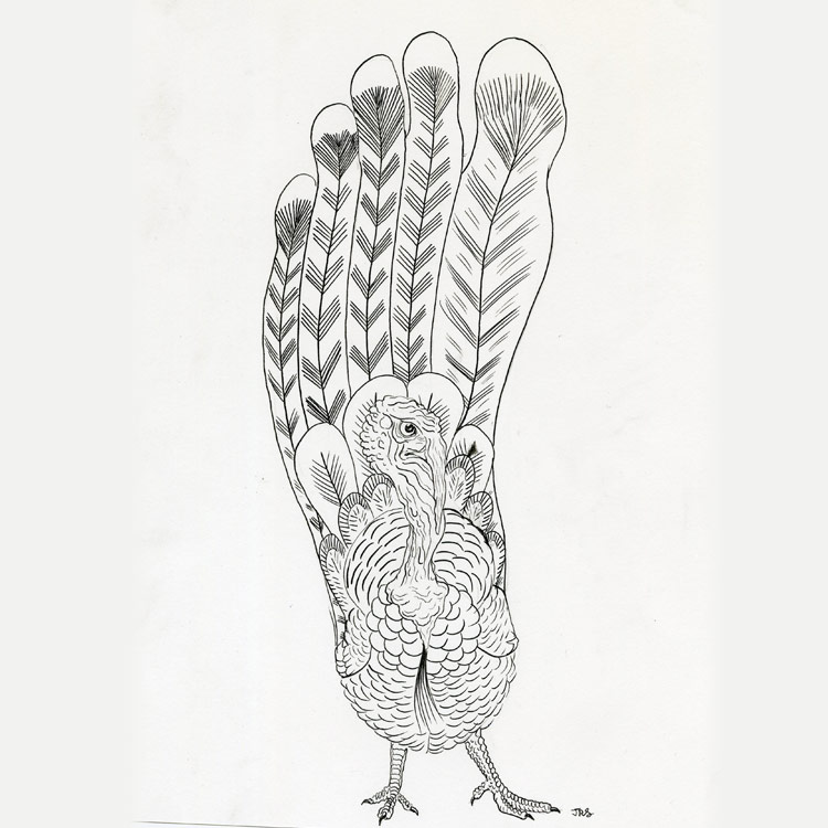 The Turkey (2016) Entry # 13