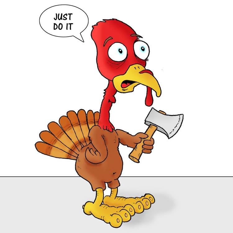 The Turkey (2016) Entry # 2