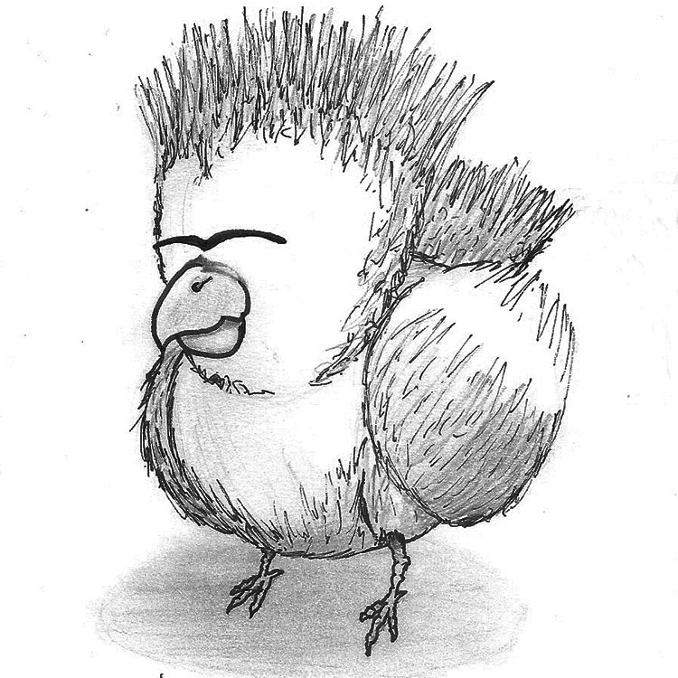The Wooly Hen Entry # 4