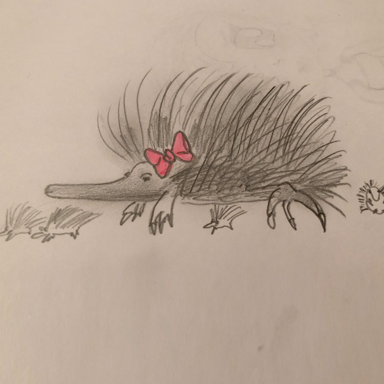 The Echidna Entry # 1